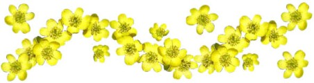 spring-clipart-band-winter-aconite